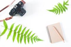 Плоское положение тетради цвета тона земли, карандаша, камеры и папоротника l Стоковое Изображение RF