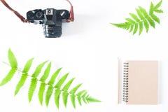 Плоское положение тетради цвета тона земли, карандаша, камеры и папоротника l Стоковые Фото