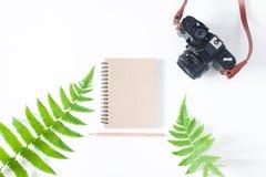 Плоское положение тетради цвета тона земли, карандаша, камеры и папоротника l Стоковое Изображение