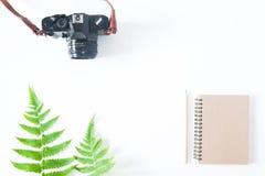 Плоское положение тетради цвета тона земли, карандаша, камеры и папоротника l Стоковая Фотография RF