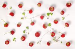 Плоское положение ультрамодной безшовной клубники красного цвета картины Стоковые Фото