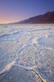 плоское соль стоковые изображения