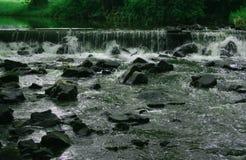 Плотина в forrest Моравии в чехии стоковое изображение rf