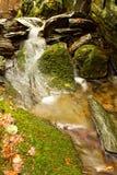 Плотина детали Стоковое Фото