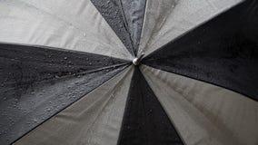Плотная съемка зонтика с падениями дождя акции видеоматериалы