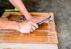 Плотник пригвождая деревянную доску для того чтобы сделать мебель Стоковые Фото