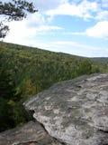 Плотный coniferous лес от верхней части горы стоковое изображение rf