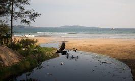 Плохая азиатская деревня с проблемой и воронами загрязнения Пластичные бутылки, сумки и канализация упали сразу в океан Стоковая Фотография RF