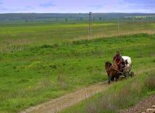 Плохая крестьянская сцена сельской местности тележки Стоковые Изображения RF