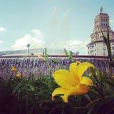 Площадь Catalunya Стоковые Изображения