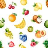 Плодоовощи акварели Стоковые Фотографии RF