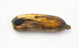Плодоовощи, банан черноты тухлый одичалый Стоковые Изображения