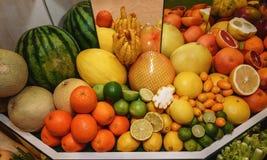плодоовощи Грейпфруты, апельсины, pamela, кумкват, дыня, арбуз, рука Buddhas Принципиальная схема здоровой еды стоковая фотография