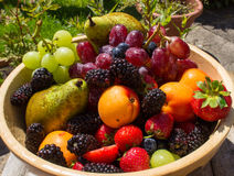 Плодоовощи лета стоковые фотографии rf