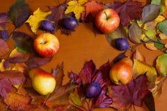 Плодоовощи и листья осени на деревянной предпосылке Стоковые Изображения