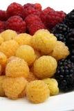 Плодоовощи и поленики ягод Стоковая Фотография RF