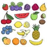 Плодоовощи и ягоды в нарисованном рукой стиле эскиза Стоковые Фото