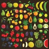 Плодоовощи и ягоды иллюстрация вектора