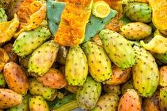 Плодоовощи крупного плана кактуса шиповатой груши Стоковые Изображения RF