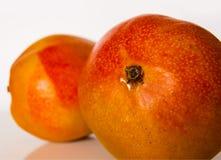 Плодоовощи манго Стоковые Изображения