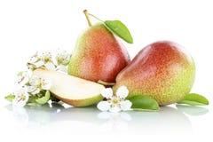 Плодоовощи плодоовощ груши груш изолированные на белизне Стоковые Фото