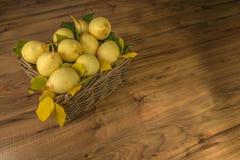плодоовощи Свежие органические груши на старой древесине Сбор осени груши Стоковое Фото