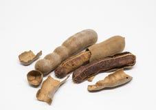 Плодоовощи тамаринда Стоковое фото RF