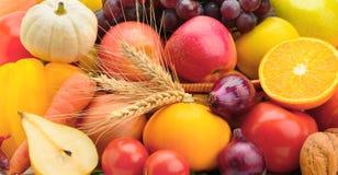 плодоовощи установили овощи Стоковая Фотография RF