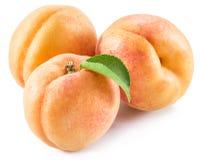 Плодоовощ абрикоса с листьями на белой предпосылке Стоковая Фотография RF