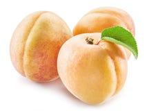 Плодоовощ абрикоса с листьями Стоковая Фотография RF
