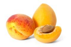 3 плодоовощ абрикоса Стоковое Изображение