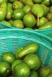 Плодоовощ авокадоа. Стоковые Изображения RF