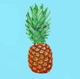 Плодоовощ ананаса на красочной голубой предпосылке, ананасе Стоковое Фото