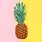 Плодоовощ ананаса на красочной желтой розовой предпосылке Стоковое Изображение