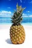 Плодоовощ ананаса на тропическом пляже Стоковые Фото