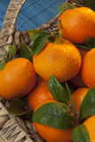Плодоовощ - апельсин мандарина Стоковое Изображение RF