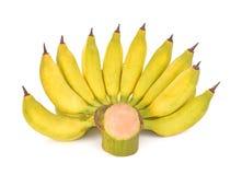 Плодоовощ банана на белой предпосылке Стоковое Фото
