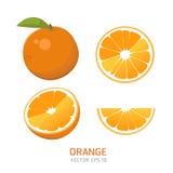 Плодоовощ вектора оранжевый Стоковые Изображения RF