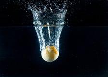 Плодоовощ выплеска Стоковые Изображения RF