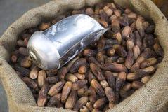 плодоовощ высушенных дат для продавать Стоковое Изображение RF
