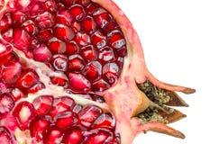 Плодоовощ гранатового дерева Стоковые Изображения RF