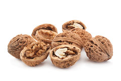 Плодоовощ грецкого ореха на белизне Стоковые Фотографии RF