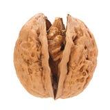 Плодоовощ грецкого ореха на белизне Стоковая Фотография RF