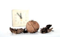 плодоовощ грецкого ореха на белой предпосылке Стоковые Фото