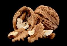 Плодоовощ грецкого ореха на черноте Стоковое Изображение RF