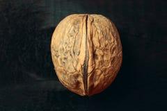 Плодоовощ грецкого ореха Стоковое фото RF