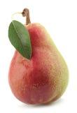 Плодоовощ груши на белизне Стоковые Фото