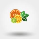 Плодоовощ и мята иллюстрация вектора