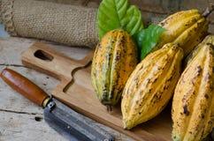Плодоовощ какао, сырцовые фасоли какао, стручок какао на деревянной предпосылке Стоковая Фотография RF