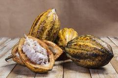 Плодоовощ какао Стоковая Фотография RF